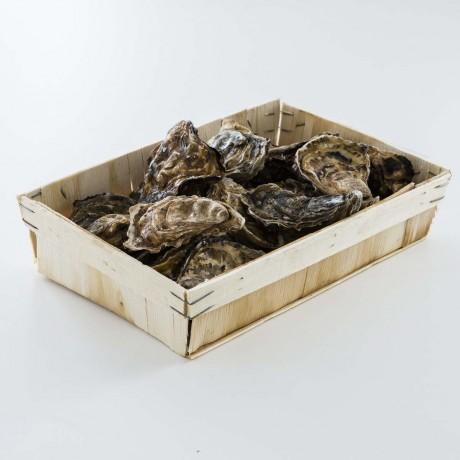 - Huîtres Fines de Claires Vendée N° 3