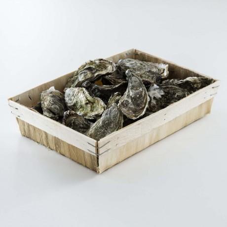 - Huîtres Fines d'Arcachon N° 3